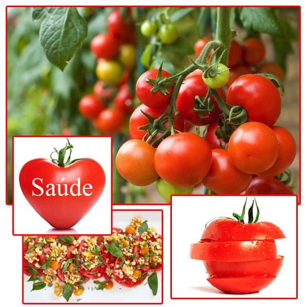10-tomate-capa