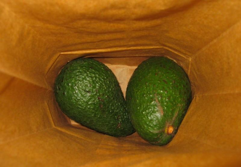 frutas e vegetais - abacate