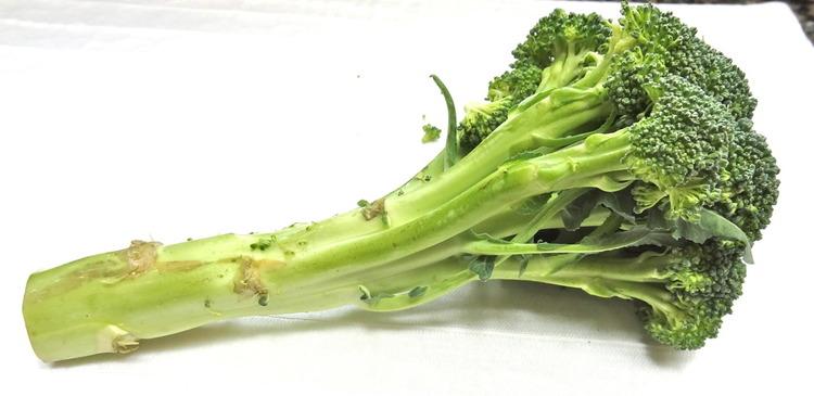 brocoli8s