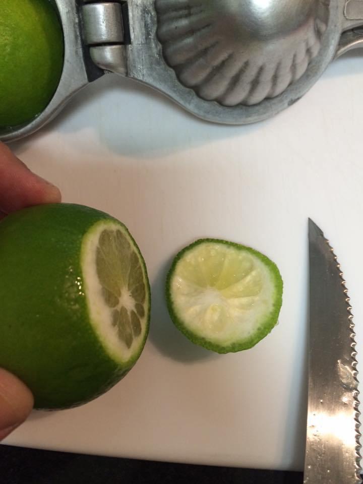 espremer-o-limao-1